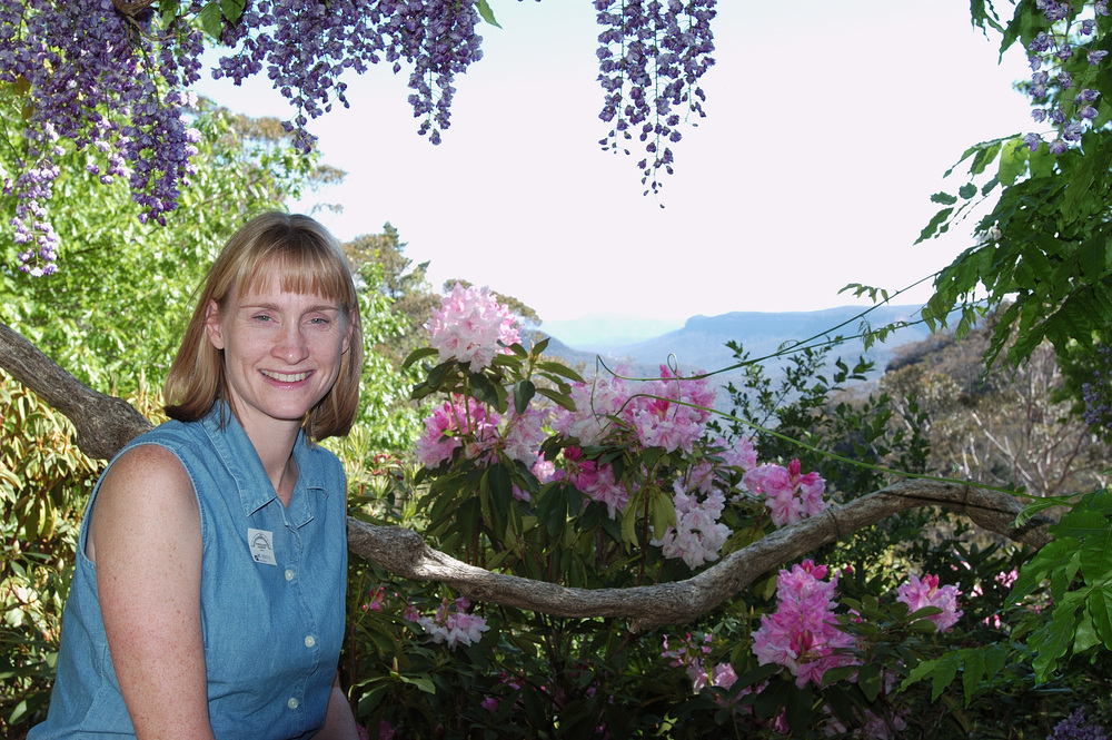 The wisteria frames a beautiful view of the Blue Mountains.