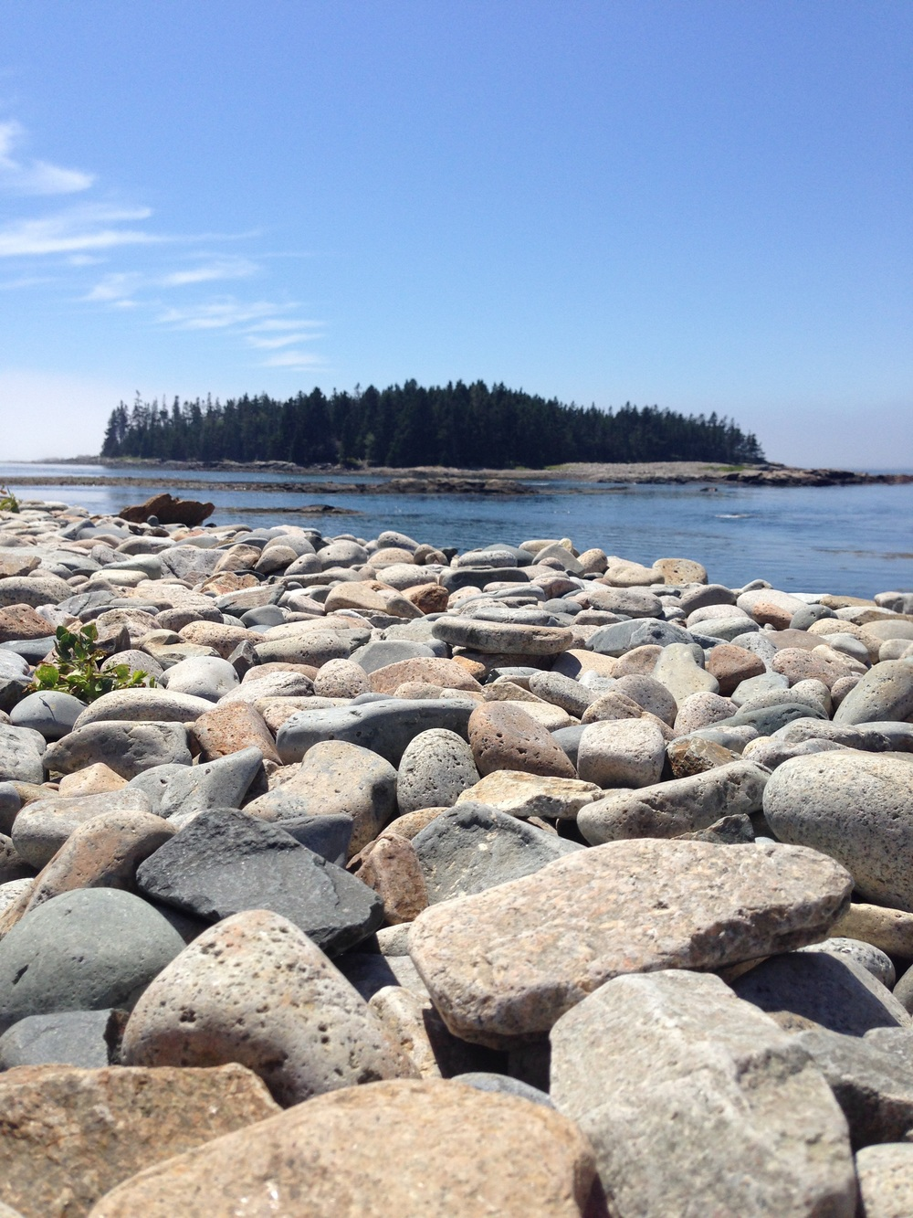 The unique rounded stones on top of the break wall and the pine forested Pond Island in the background.