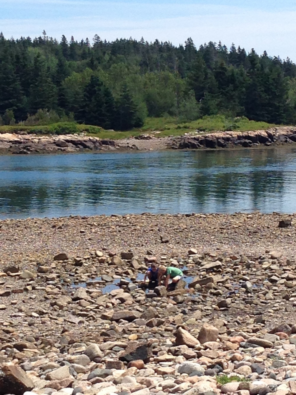 Frazer Point is one of the few places where it's safe to approach the water, here a few kids explore a tide pool at low tide.
