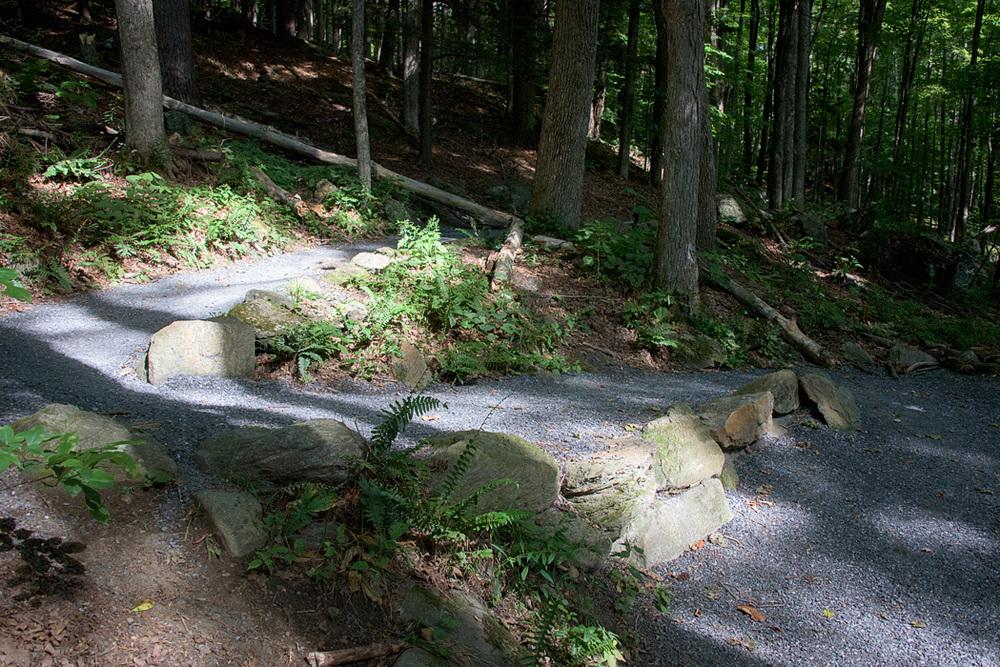 The start of the Faulkner Trail