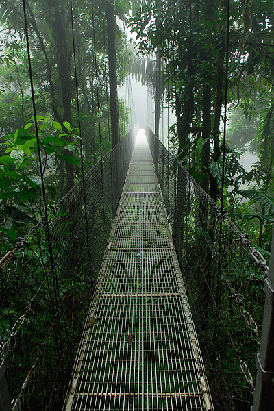Hanging Bridges in Arenal