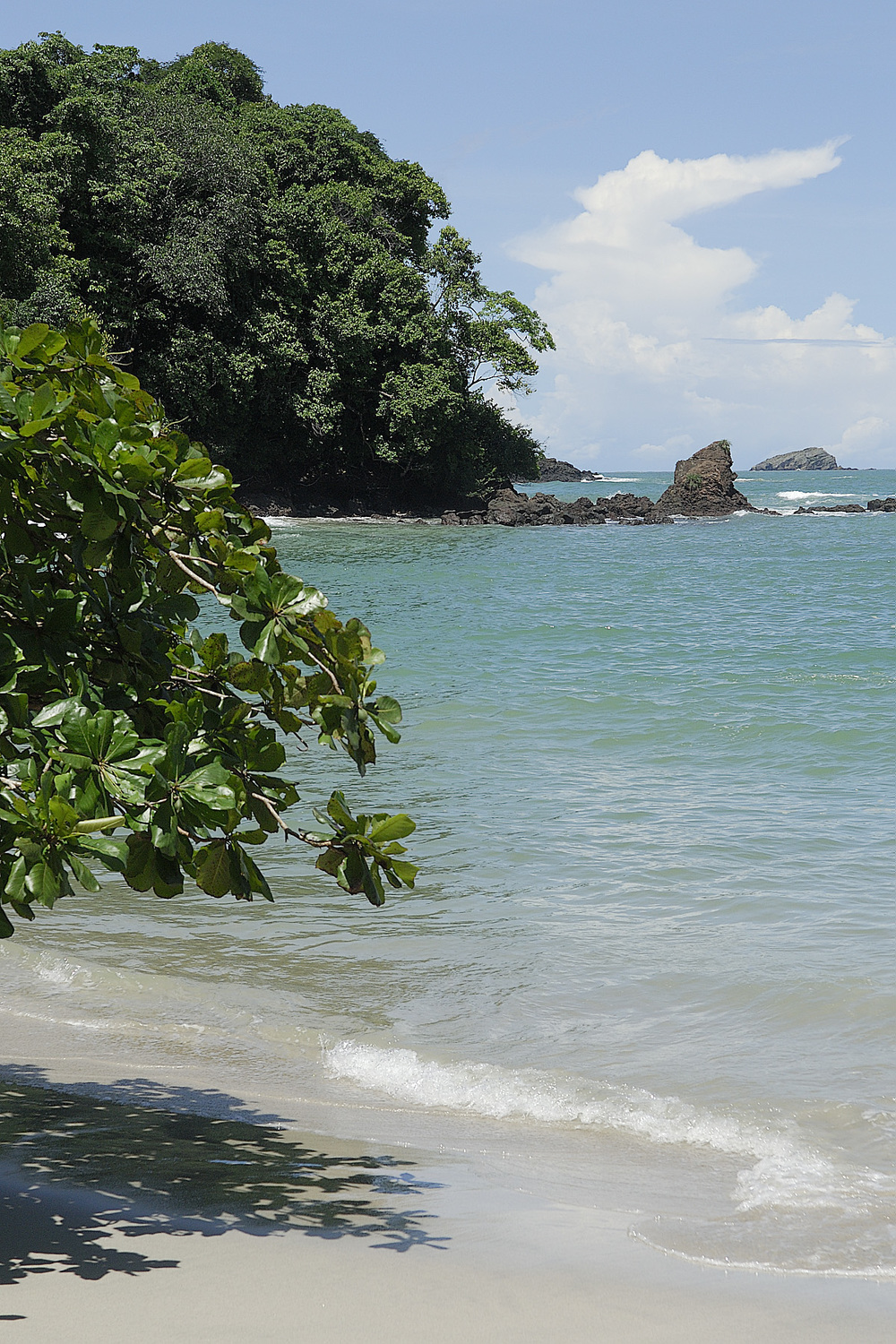 The hike through the rain forest ends at a beautiful beach on the Pacific ocean, which makes PMA the perfect place to sample some wildlife in Costa Rica and enjoy some beach time too.
