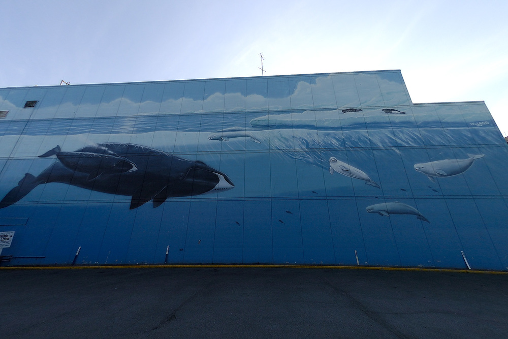 The well known Wyland mural in Anchorage