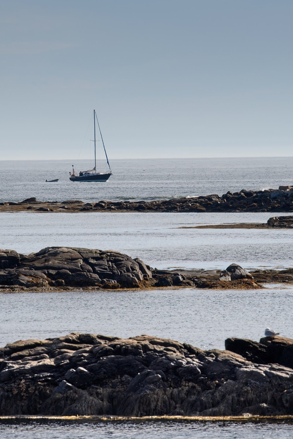 A sailboat moored in Schoodic Harbor