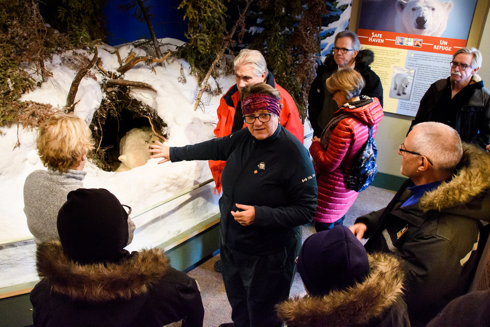 "Rhonda shows our group a model of a polar bear den at the Visitors Centre, which she assured us was created with ""woolen"" bears."