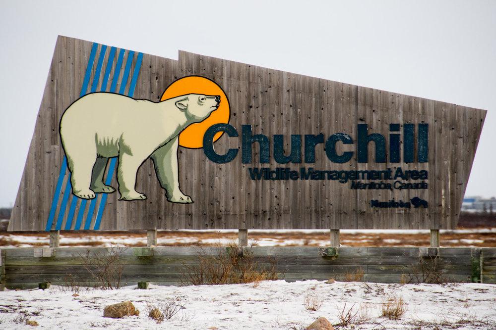 20161030 - Churchill - 192.jpg