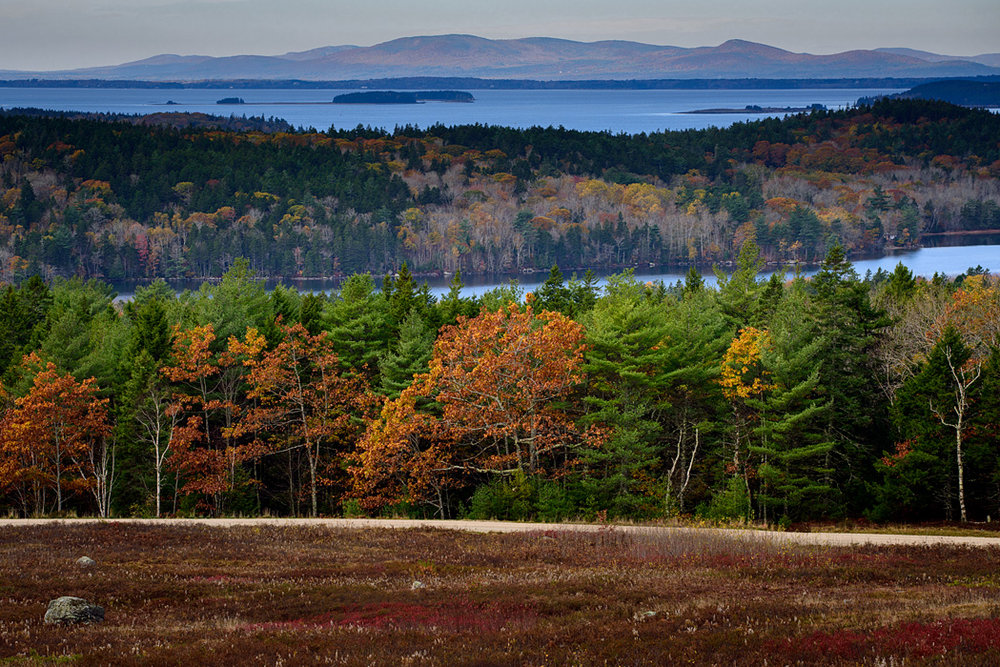 ...more blueberry barrens, mountains and ocean views...both on the coast of Maine, but which is a major tourist attraction and which is a quiet village? See the answer at the end of our post!