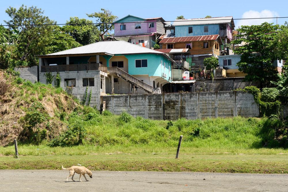 20170306 - Roatan Honduras - 094.jpg