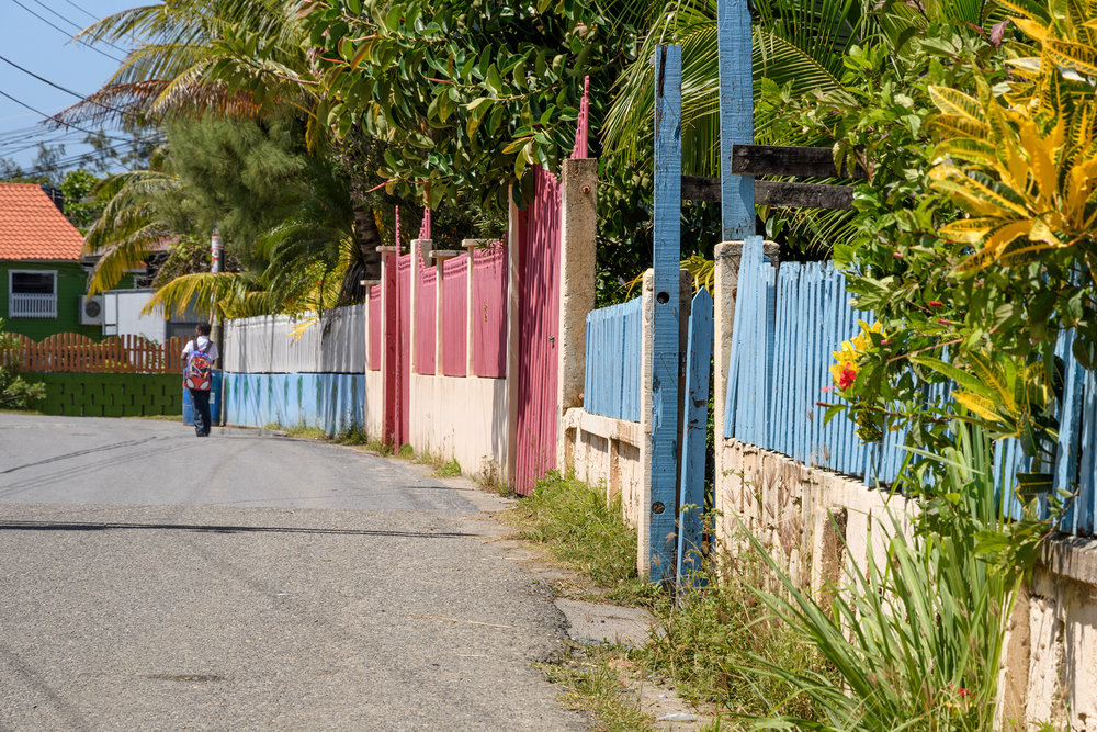 Colorful fences in another neighborhood in Roatan