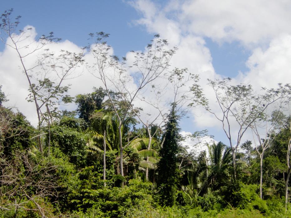 20170307 - Belize - 171.jpg