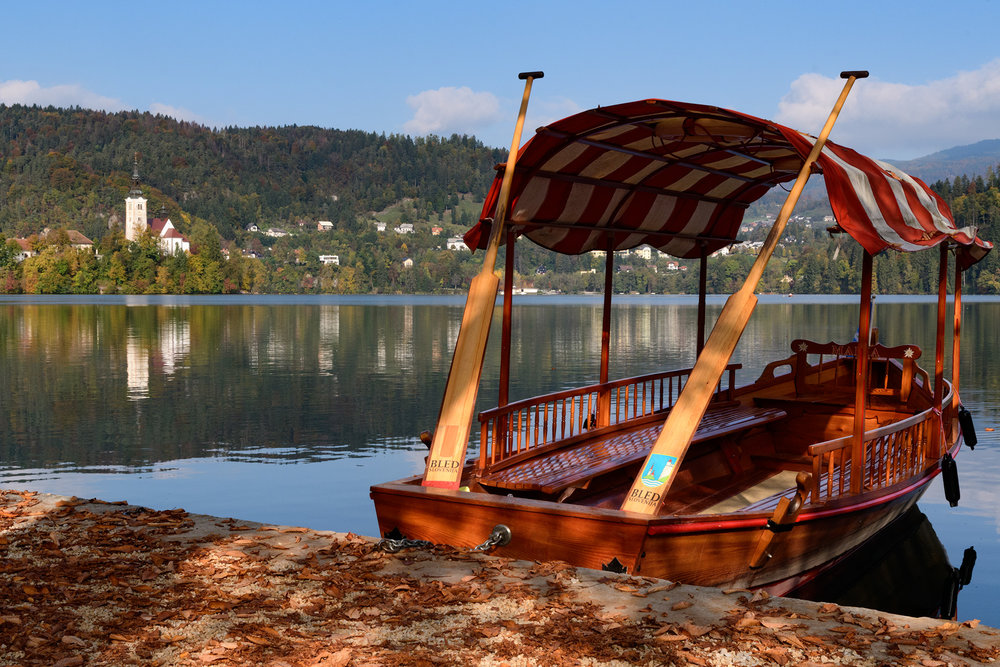 Plenta boats wait to take people to the Assumption of Mary Pilgrimage Church on the island in the middle of Lake Bled
