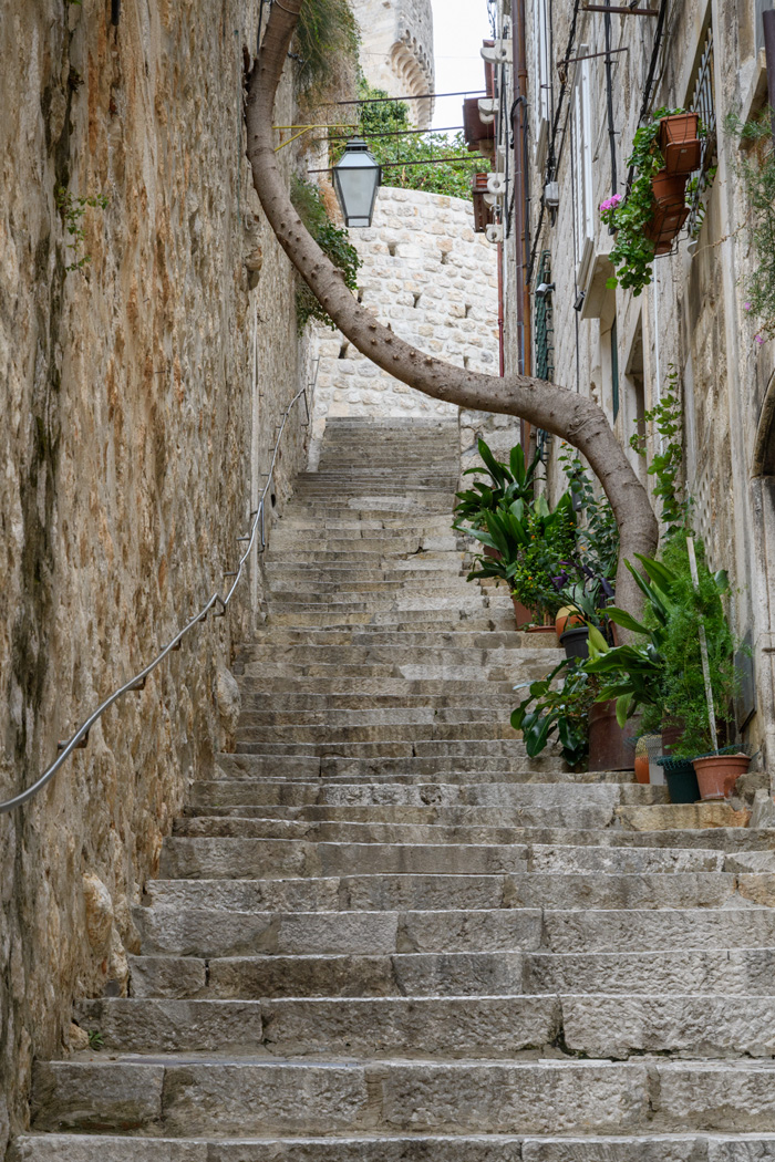 The stairs leading to the fortress are narrow, uneven and steep! But the sites and views are worth the effort!