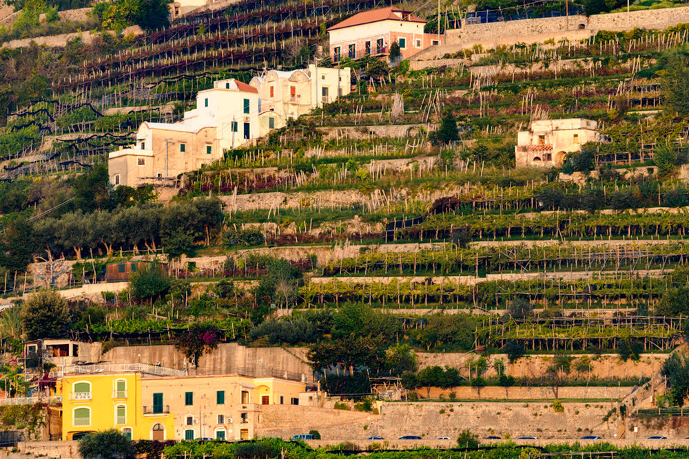 High on the cliffs, families have terraced the land where they have grown their own olives, grapes and lemons for generations. Some of the harvesting seasons are later in the fall and make for interesting photos and the opportunity for shoulder season food touring.
