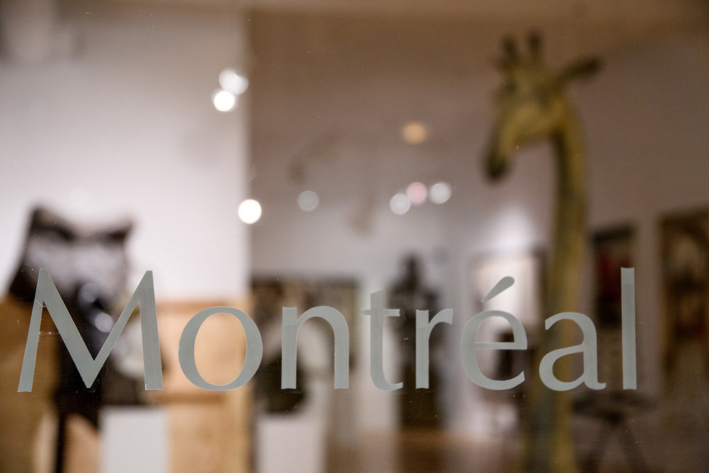 There are high end galleries and accessible tourist shops along Rue St Paul, as well as many restaurants and bars.