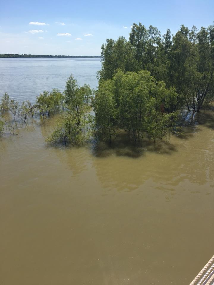 The Mississippi had flooded it's banks in places in St Francisville