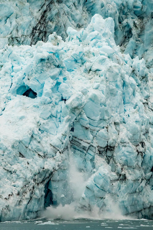 20180816 - Glacier Bay - 0076.jpg