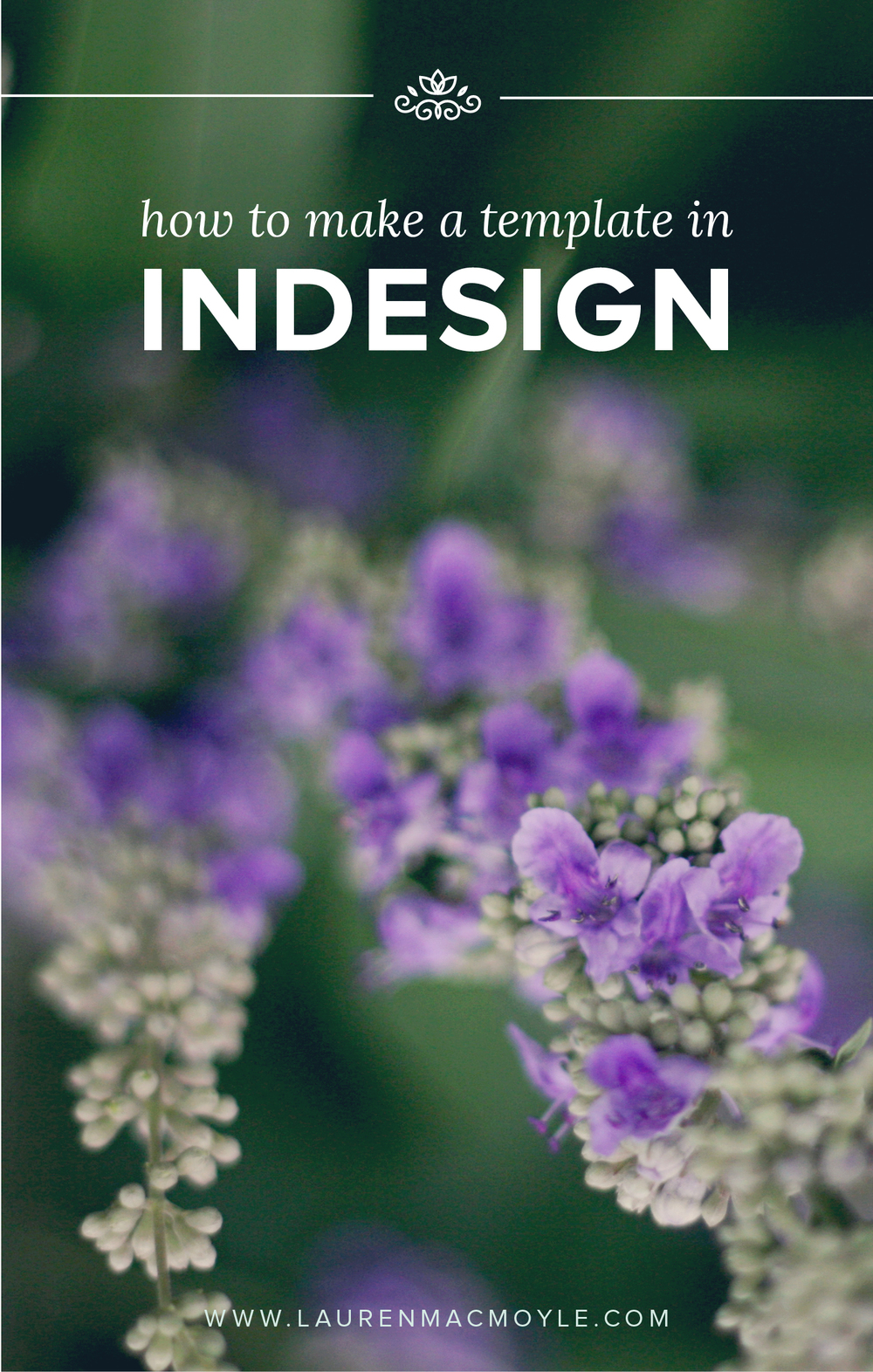 How to Make a Template in Adobe InDesign | Lauren MacMoyle | Graphic Design