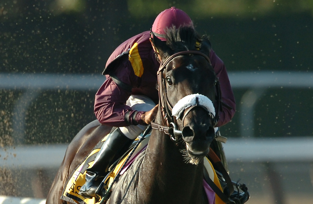 Breeders' Cup Juvenile and eclipse award winner War Pass - $180,000 purchase