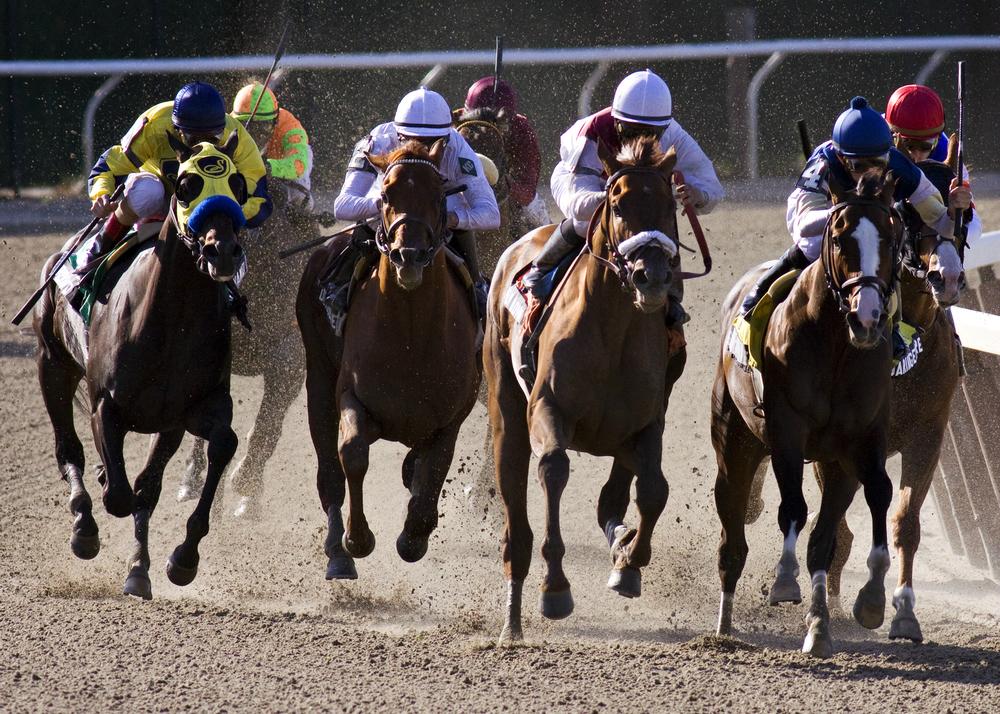 Moran-2010 Dwyer Stakes.jpg
