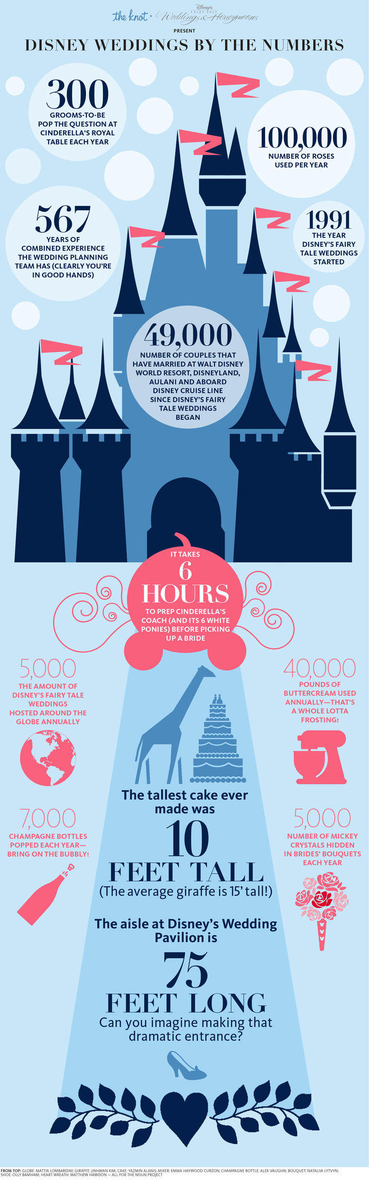 the knot disney weddings by the numbers