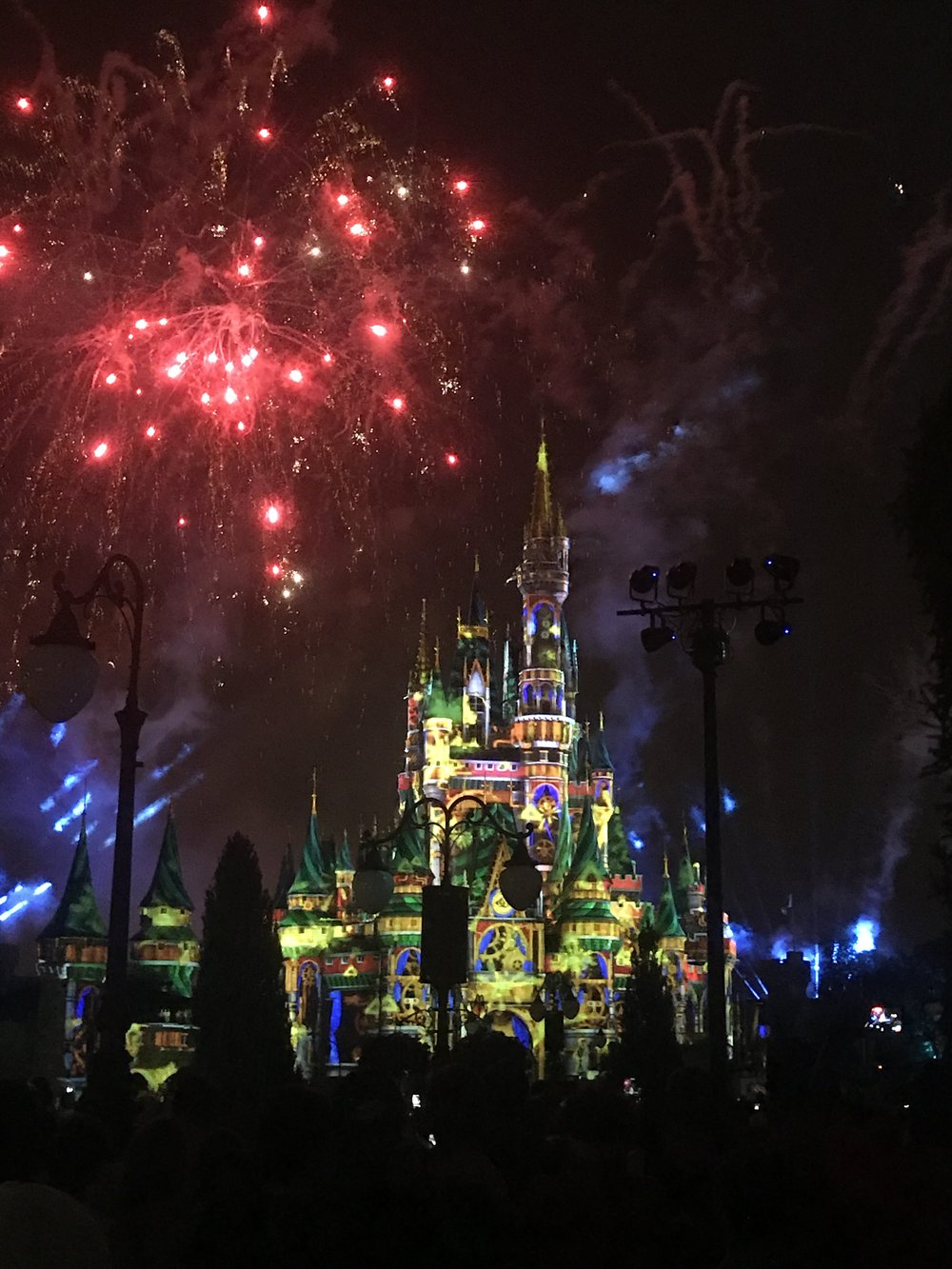 risa xu Disney world fireworks happily ever after