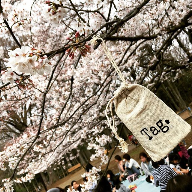 @passthetag made its way to Japan during the Cherry Blossom festival... Connecting people across the world  #spreadthelove #passthetag