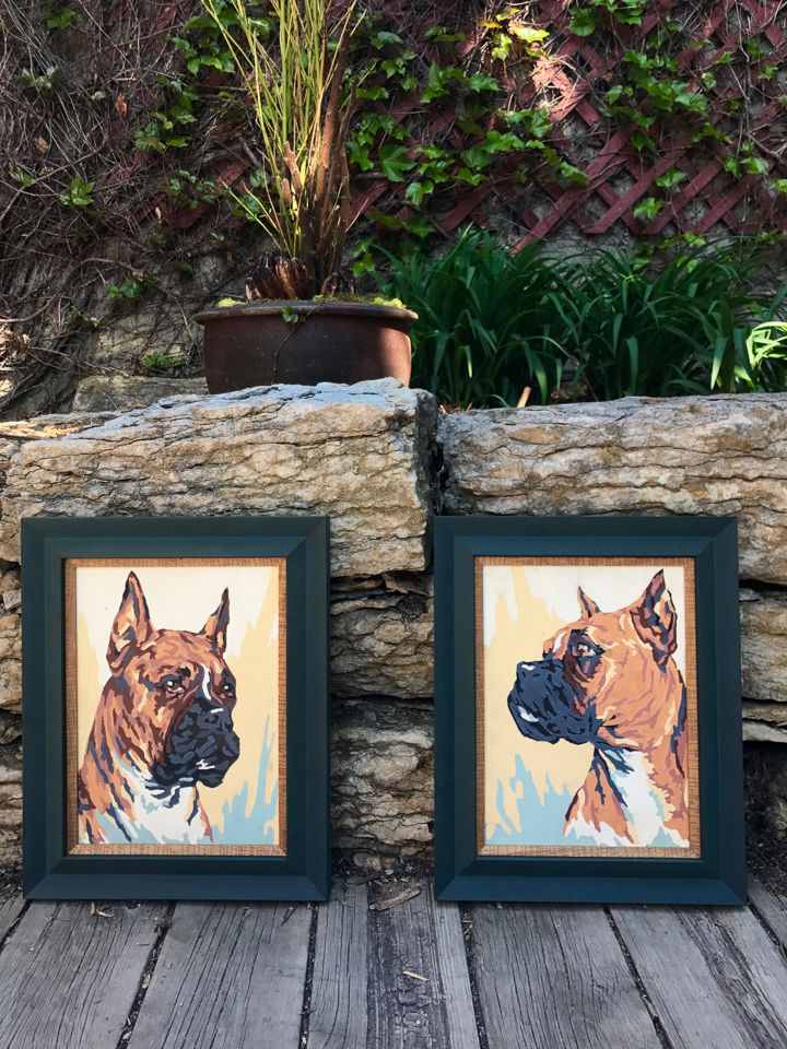 Vintage paint-by-number paintings of Boxers. Framed in angled teal with natural cherry insert.