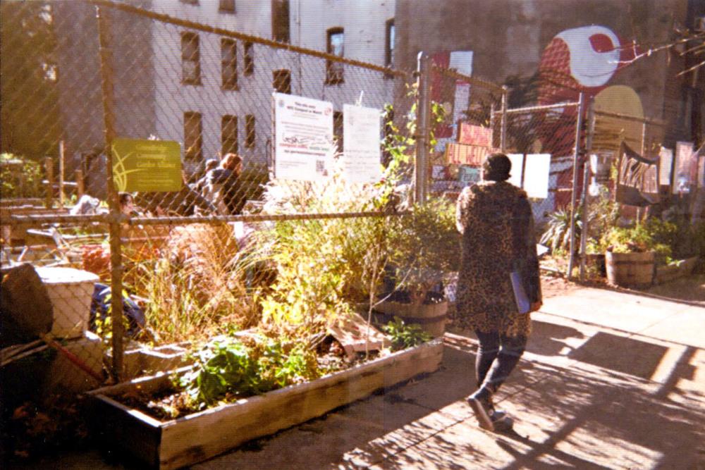 462 Halsey Community Garden