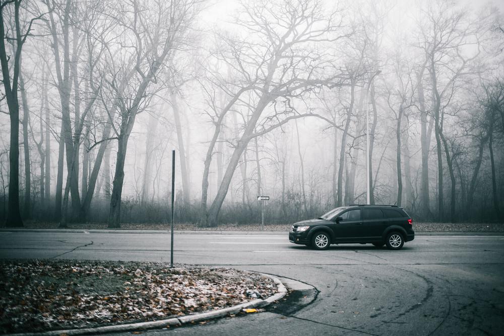 park-fog-2.jpg