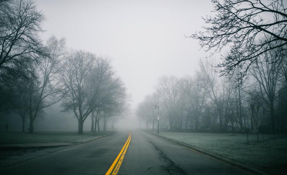park-fog-6.jpg