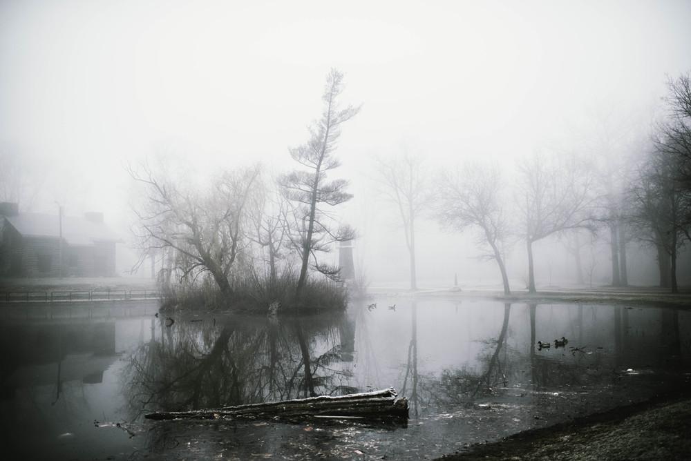 park-fog-11.jpg
