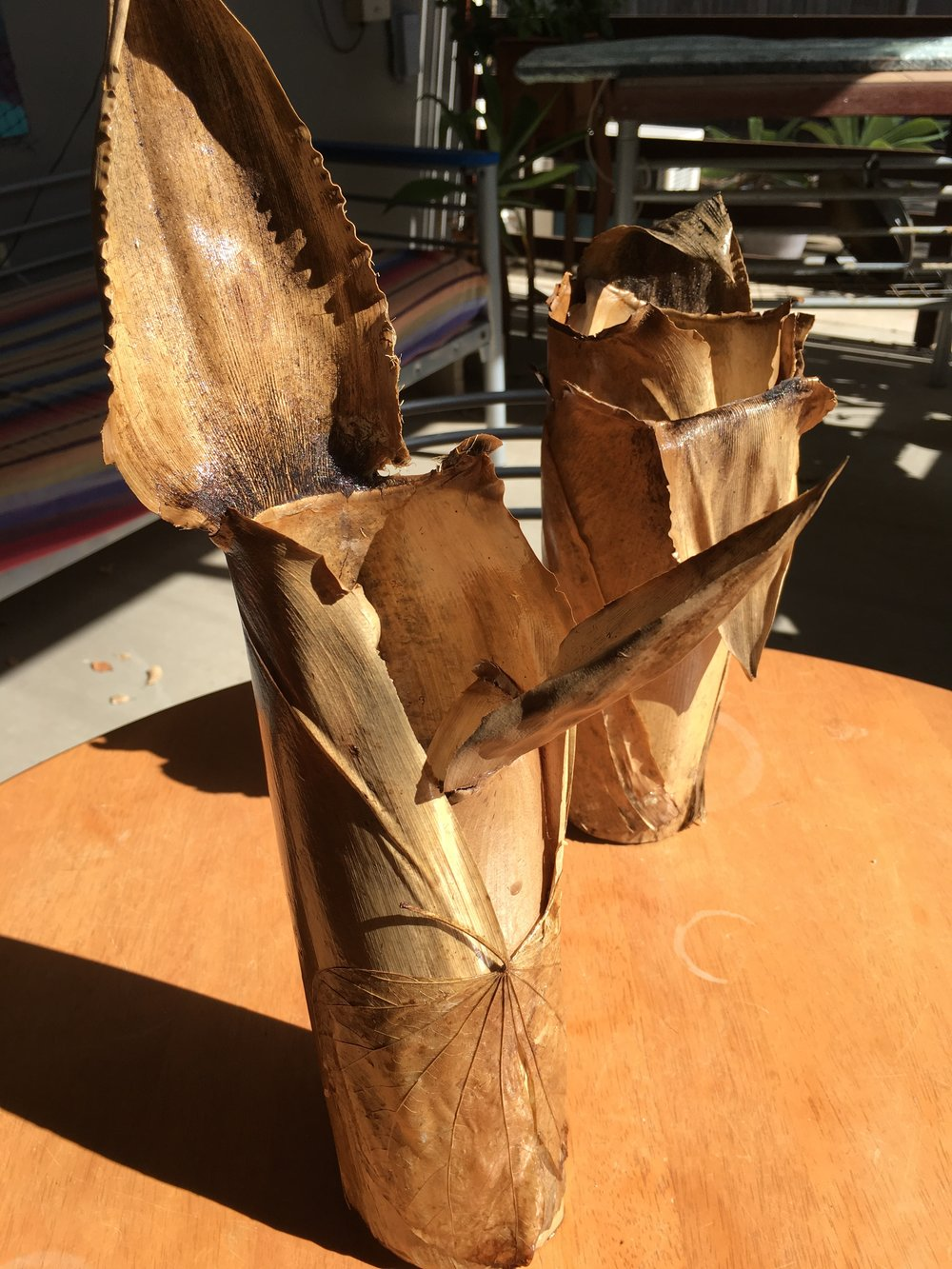 Bamboo leaf vases