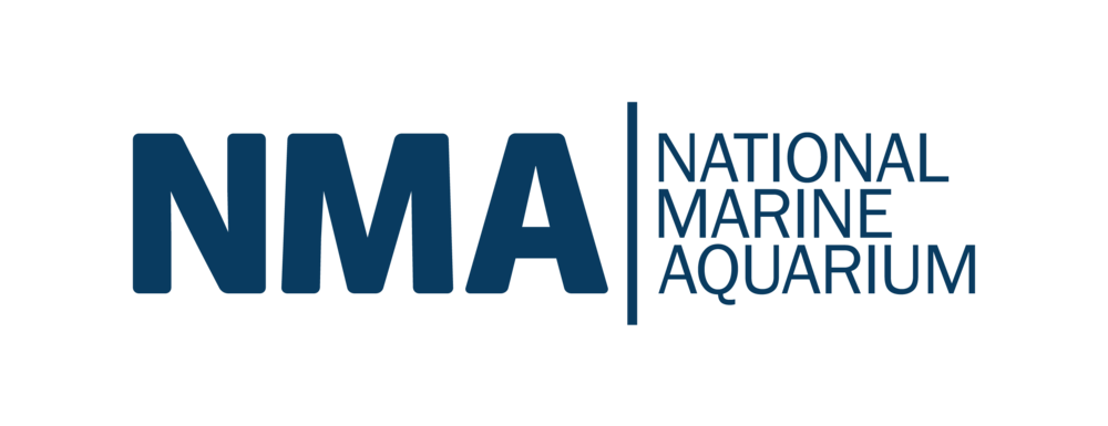 NMA NEW LOGO (BLUE).png
