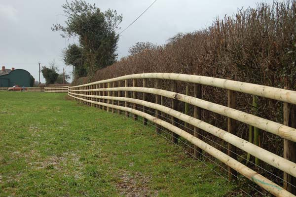 post and rail fence.jpg
