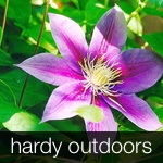 Square pic HARDY OUTDOORS block 150.jpg