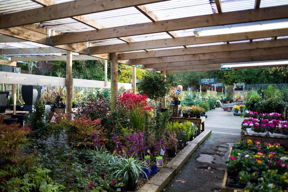 Pyle Garden centre-128.jpg