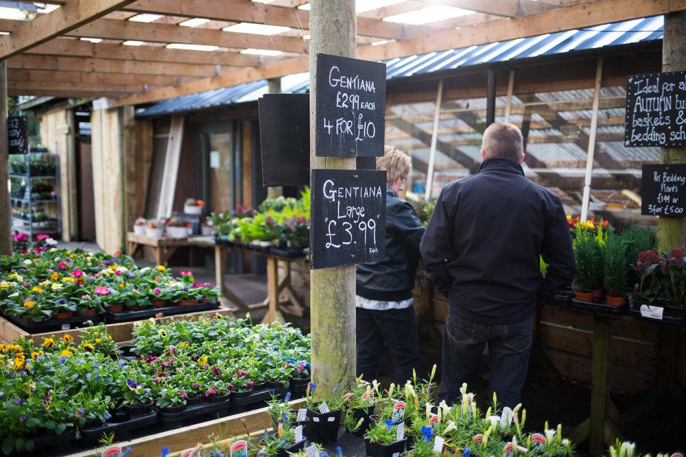 Pyle Garden centre-129.jpg