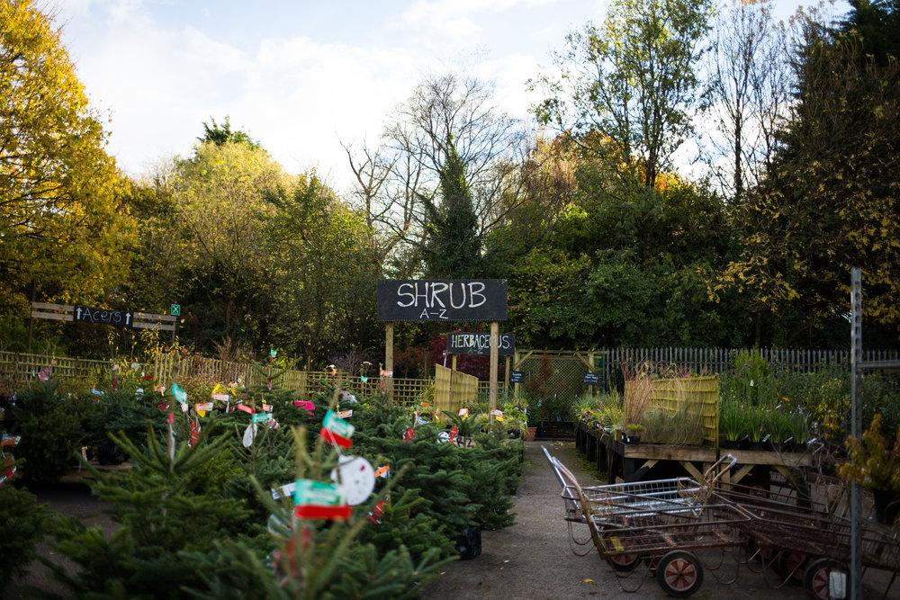 Pyle Garden centre-135.jpg