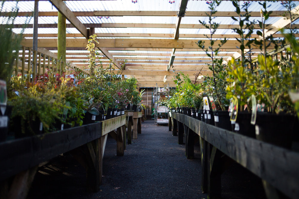 Pyle Garden centre-139.jpg