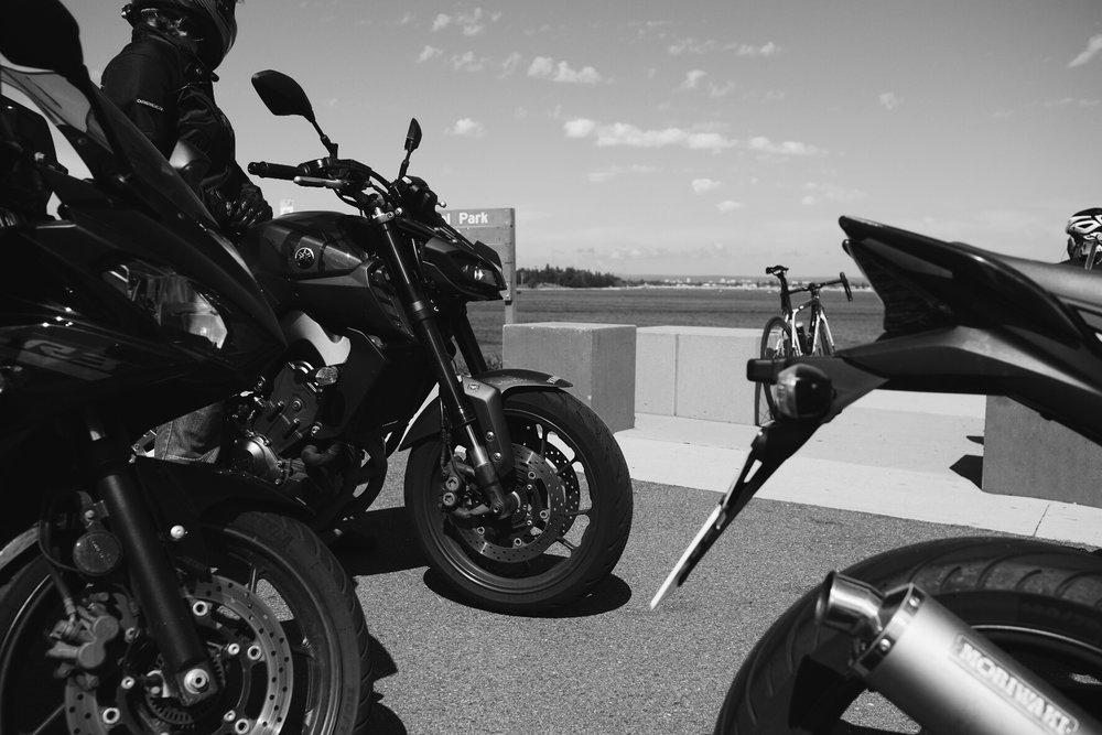 ivv_throttle_dolls_ride_petrolette_11.jpg