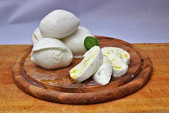 gastronomica4.jpg