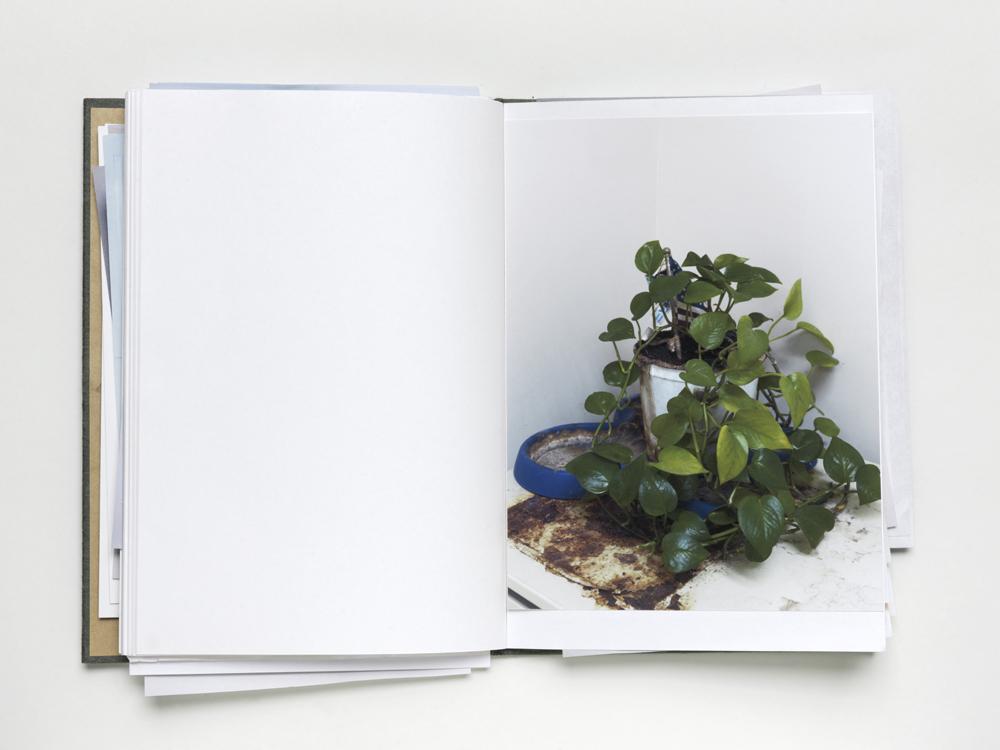 BD 08 boek #def-def zondag_0223.jpg