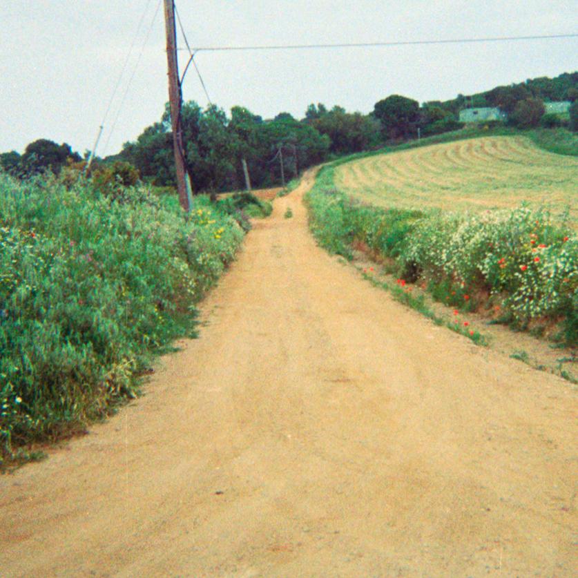 camino_nonabruna.png