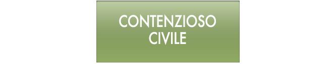 contenzioso-civile.png