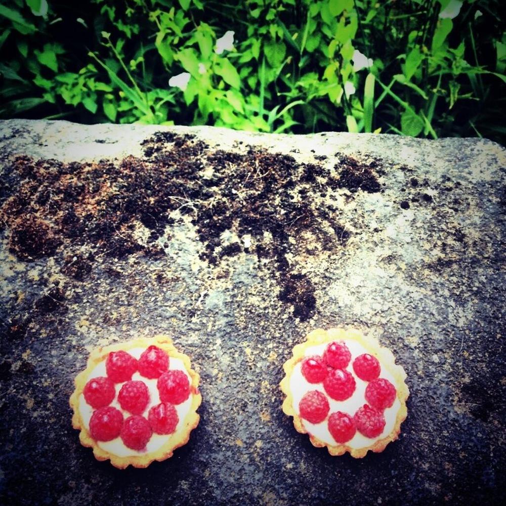 Fresh baked tarts