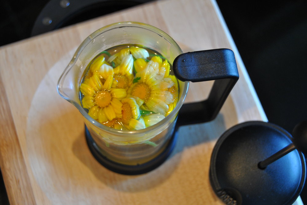 Chrysanthemum tea - a simple infusion of the flowers gives a golden brew