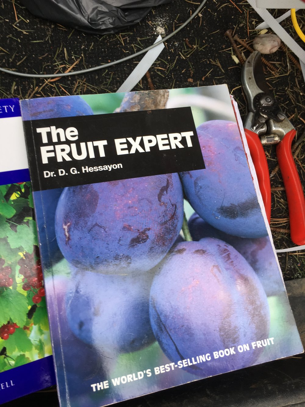 The fruit expert- a book with great pruning advice