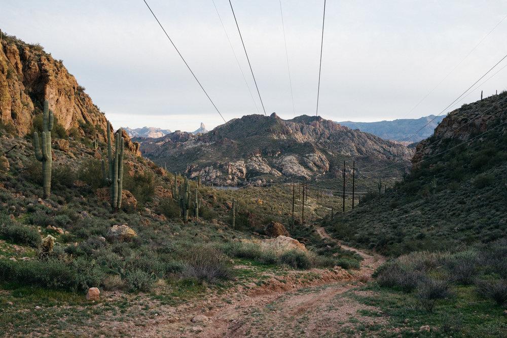 Arizona Green 2.jpg