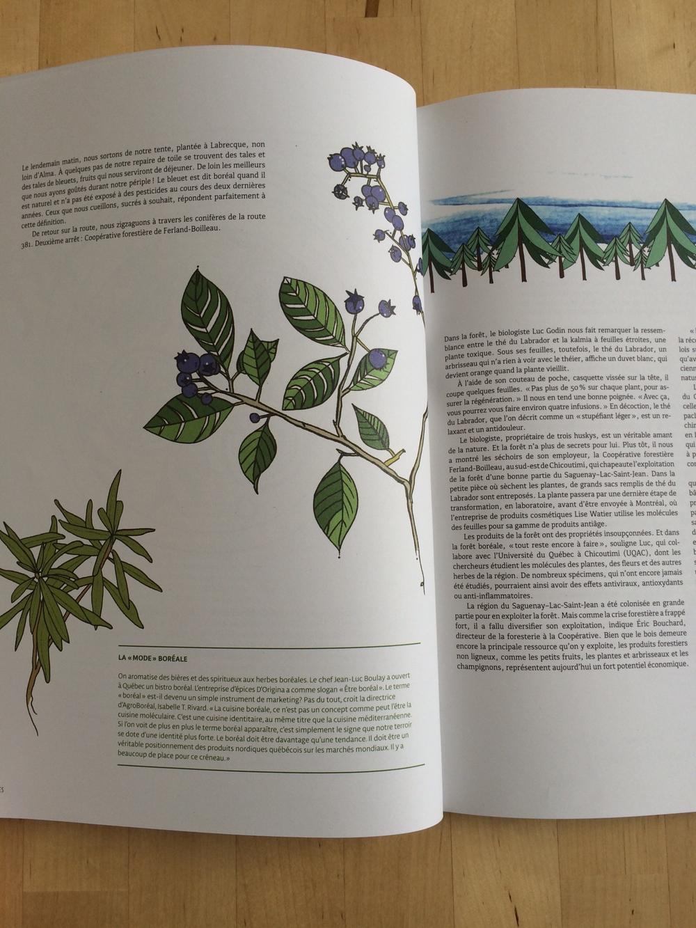 caribou-magazine3-minimaison