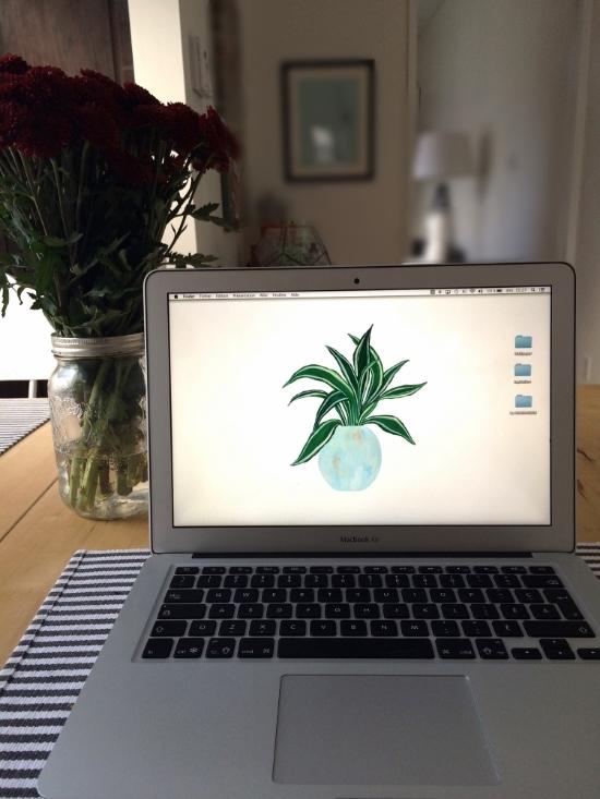 Voici mon choix en ce moment. Une plante verte! C'est rigolo et épuré.